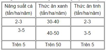 thuc-an-ca-chep